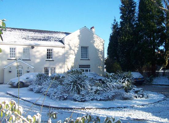 Roseland in it's winter beauty